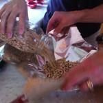 Using Black-Eyed Peas to Pre-bake Crust