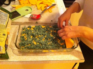 Butternut Squash and Spinach Gratin